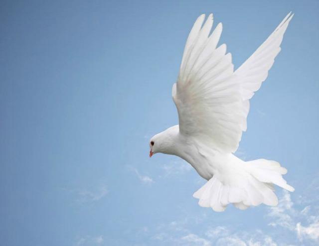 Anziano Bednar e le Enormi Benedizioni dello Spirito Santo