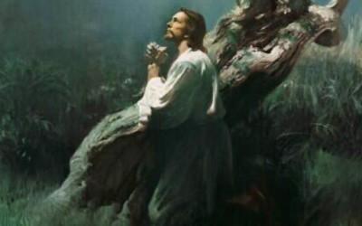 Perché Gesù ha espiato per i nostri peccati? Perché non possiamo farlo noi?