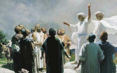 Guardiamoci dai pericoli dell'apostasia
